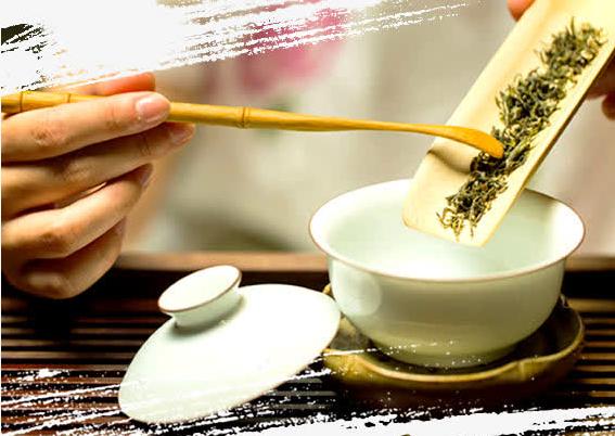 月五千+抽成+包住茶艺师
